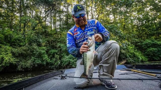 Photo Courtesy FLW